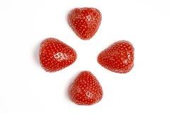 Twee rode verse gewassen aardbeien op witte achtergrond Sluit omhoog macrofoto Royalty-vrije Stock Fotografie