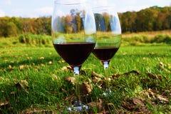 Twee rode wijnglazen op een gebied Stock Fotografie