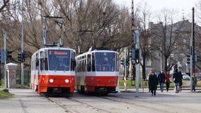 Twee rood-wit gekleurde trams die zich zij aan zij bij post in Tallinn, Estland bevinden Stock Afbeeldingen