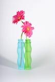 Twee roze gerberlelies Stock Afbeelding