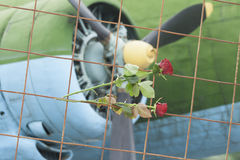 Twee rozen op een rooster tegen vliegtuigbladen stock afbeelding