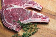 Twee ruwe lapjes vlees Royalty-vrije Stock Afbeelding