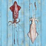 Twee ruwe verse pijlinktvissen op een houten raad Stock Afbeeldingen