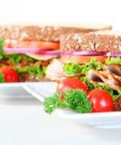 Twee sandwiches royalty-vrije stock foto