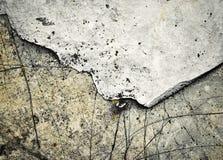 Twee schaduwen van kalksteenrotsen Royalty-vrije Stock Foto