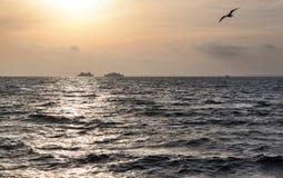 Twee schepen in het overzees Stock Foto's