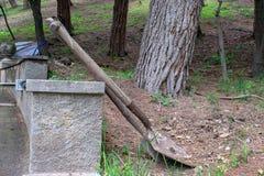 Twee schoppen van de tuinman` s aarde met boom het plaatsen Royalty-vrije Stock Foto's