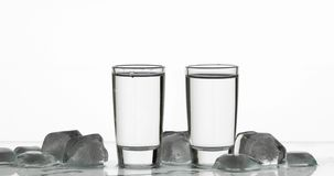 Twee schoten van wodka in glazen Witte achtergrond stock foto's
