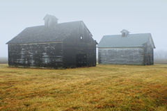 Twee Schuren in mist stock fotografie