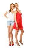 Twee sexy maniervrouwen in de zomerkleren Stock Afbeelding