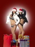 Twee sexy meisjes Stock Foto