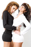 Twee sexy meisjes Royalty-vrije Stock Foto