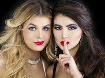 Twee sexy modellen, mooi blonde en brunette stock afbeelding