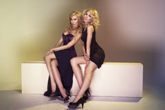 Twee sexy vrouwen Stock Fotografie