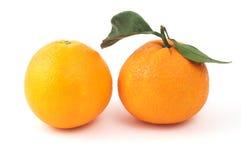 Twee sinaasappelen royalty-vrije stock fotografie