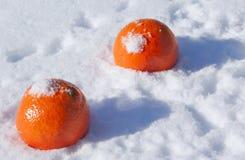 Twee sinaasappelen in de sneeuw Stock Fotografie