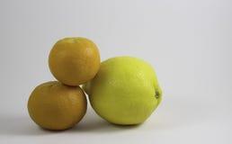 Twee Sinaasappelen en een Citroen Stock Afbeeldingen