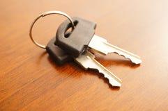 Twee sleutels Royalty-vrije Stock Afbeelding