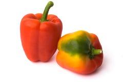 Twee Spaanse pepers Royalty-vrije Stock Afbeelding
