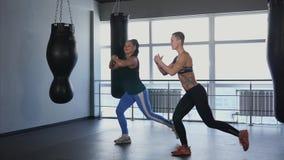 Twee sportieve woman do exercises voor de ontwikkeling van spierstelsel stock videobeelden
