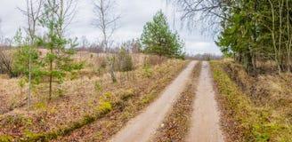 Twee stegen op landelijk landwegpanorama Royalty-vrije Stock Foto's
