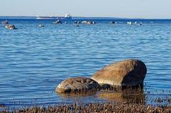 Twee stenen bij kust Royalty-vrije Stock Foto's