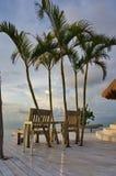 Twee stoelen twee palmen stock afbeeldingen