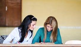Twee studenten die samen leren stock afbeelding