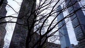 Twee super lange flats van NYC stock footage