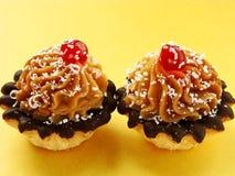 Twee taartjes Royalty-vrije Stock Fotografie