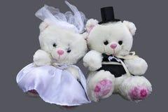 Twee Teddy Bears op grijze achtergrond wordt geïsoleerd die royalty-vrije stock afbeeldingen