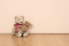Twee teddyberen Royalty-vrije Stock Foto