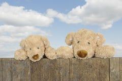 Twee teddyberen die van boven een omheining kijken stock foto's