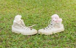 Twee teddyberen in tennisschoenen op het gras Warme tonen Stock Afbeeldingen