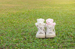 Twee teddyberen in tennisschoenen op het gras Warme tonen Royalty-vrije Stock Afbeelding