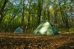 Twee tentenkamp in het midden van een mooi bos Royalty-vrije Stock Foto's