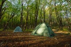 Twee tentenkamp in het midden van een mooi bos Stock Foto's