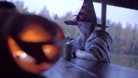Twee tienermeisjes die candys na truc delen of behandelen op Halloween stock videobeelden