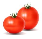 Twee Tomaten Stock Foto's