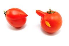 Twee tomaten Royalty-vrije Stock Foto's