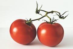 Twee tomaten die op witte achtergrond worden geïsoleerd Stock Afbeelding