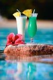 Twee tropische cocktails royalty-vrije stock afbeeldingen