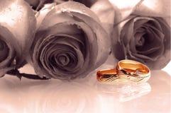 Twee trouwringen royalty-vrije stock fotografie