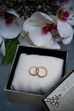 Twee trouwringen in een doos Royalty-vrije Stock Afbeeldingen