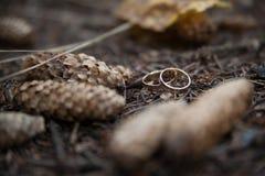 Twee trouwringen in oneindigheidsteken op een hout Het concept van de liefde Stock Foto
