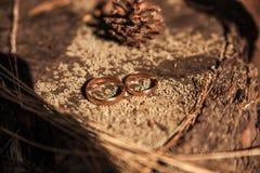 Twee trouwringen in oneindigheidsteken op een hout Het concept van de liefde Royalty-vrije Stock Afbeelding