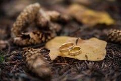 Twee trouwringen in oneindigheidsteken op een hout Het concept van de liefde Stock Foto's