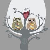 Twee uilen en liefdeboom Royalty-vrije Stock Afbeeldingen