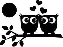 Twee uilen in liefde Stock Afbeeldingen
