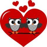 Twee uilen in liefde Stock Foto
